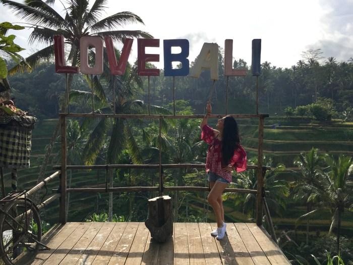 Love Bali Rice Fields