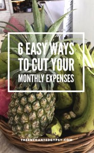 6 Easy Ways To Cut Your Monthly Expenses www.TheEnchantedGypsy.com