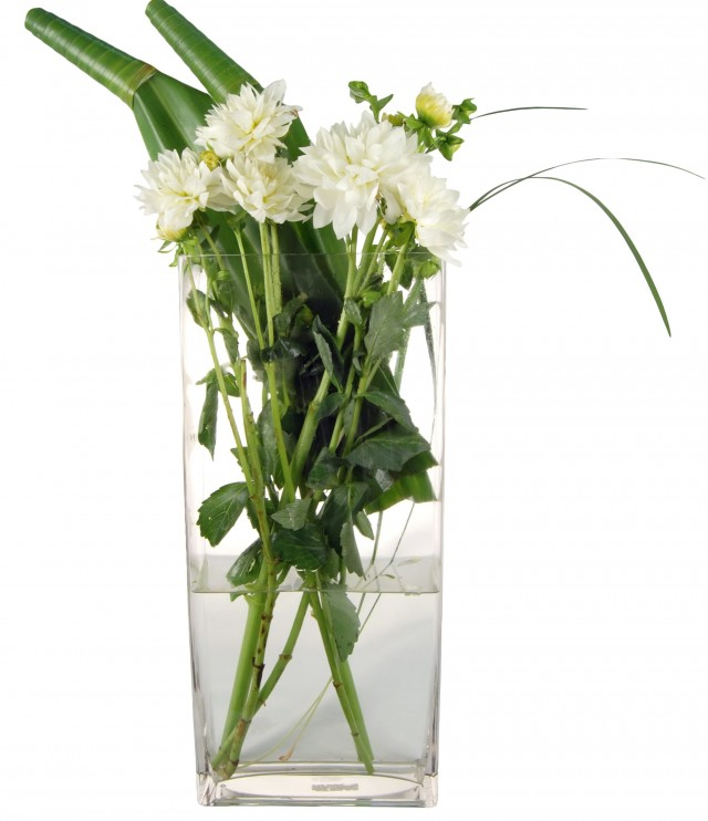 Wholesale Glass Vases And Jars