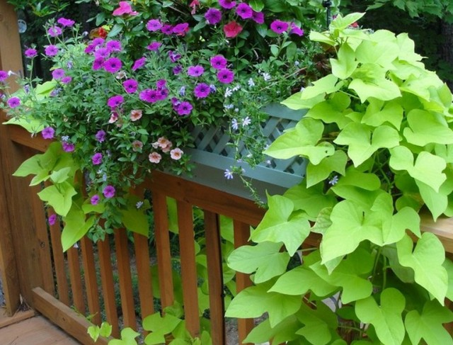 Deck Railing Planters Lowes