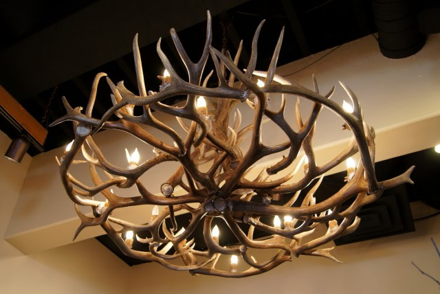 Deer Horn Chandelier Kit