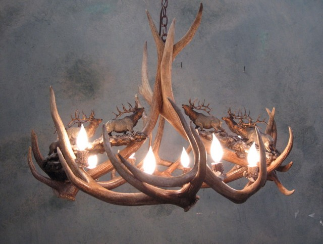 Elk Antler Chandeliers For Sale