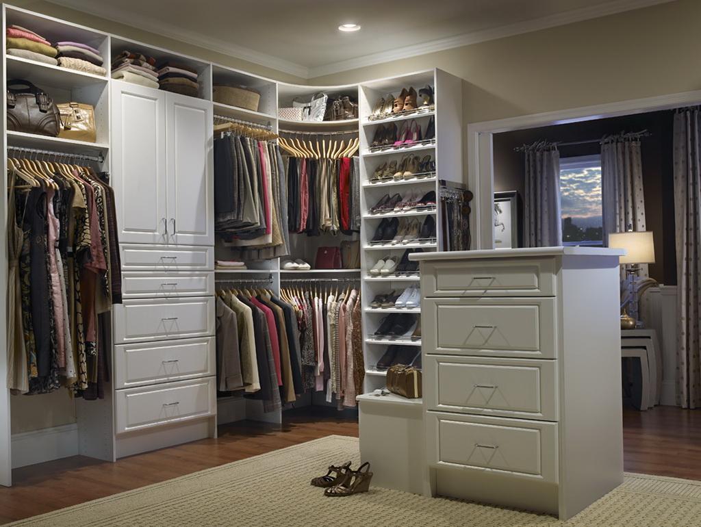 Organize Walk In Closet Ideas