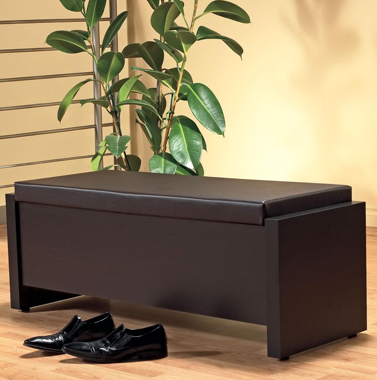 Diy Storage Bench With Cushion