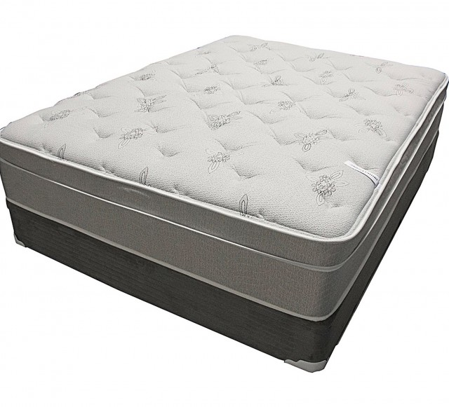 Cushion Firm Mattress Reviews