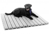 Best Deck Material For Dogs
