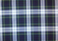 blue and green plaid curtains