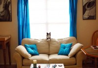 Bright Blue Curtains Uk