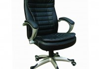 lumbar seat cushion for office chair