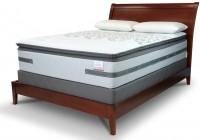 Sealy Cushion Firm Euro Pillowtop