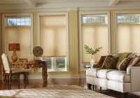 Window Curtains With Blinds