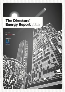 Directors report 2015 front cover image