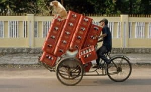 beers-in-bicycle-300x183