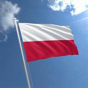 The Polish Accent