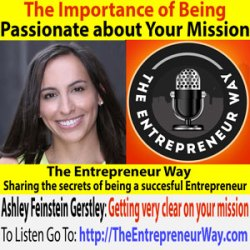 245: The Importance of Being Passionate about Your Mission with Ashley Feinstein Gerstley the Founder and Owner of the Fiscal Femme