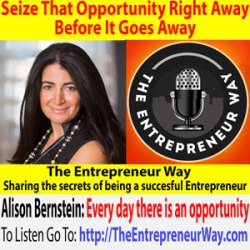 576: Seize That Opportunity Right Away Before It Goes Away with Alison Bernstein Founder and Owner of Suburban Jungle Realty