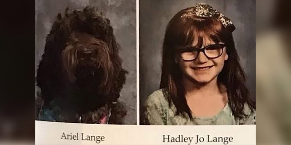 Service Dog Scores Adorable Yearbook Photo Next to the Kindergartner She Cares For