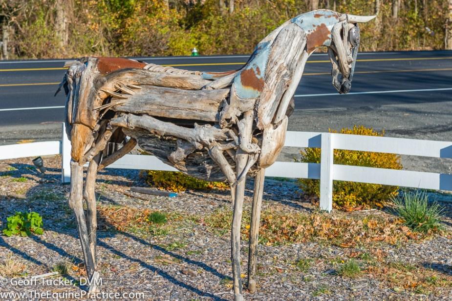 The Equine Practice, Inc