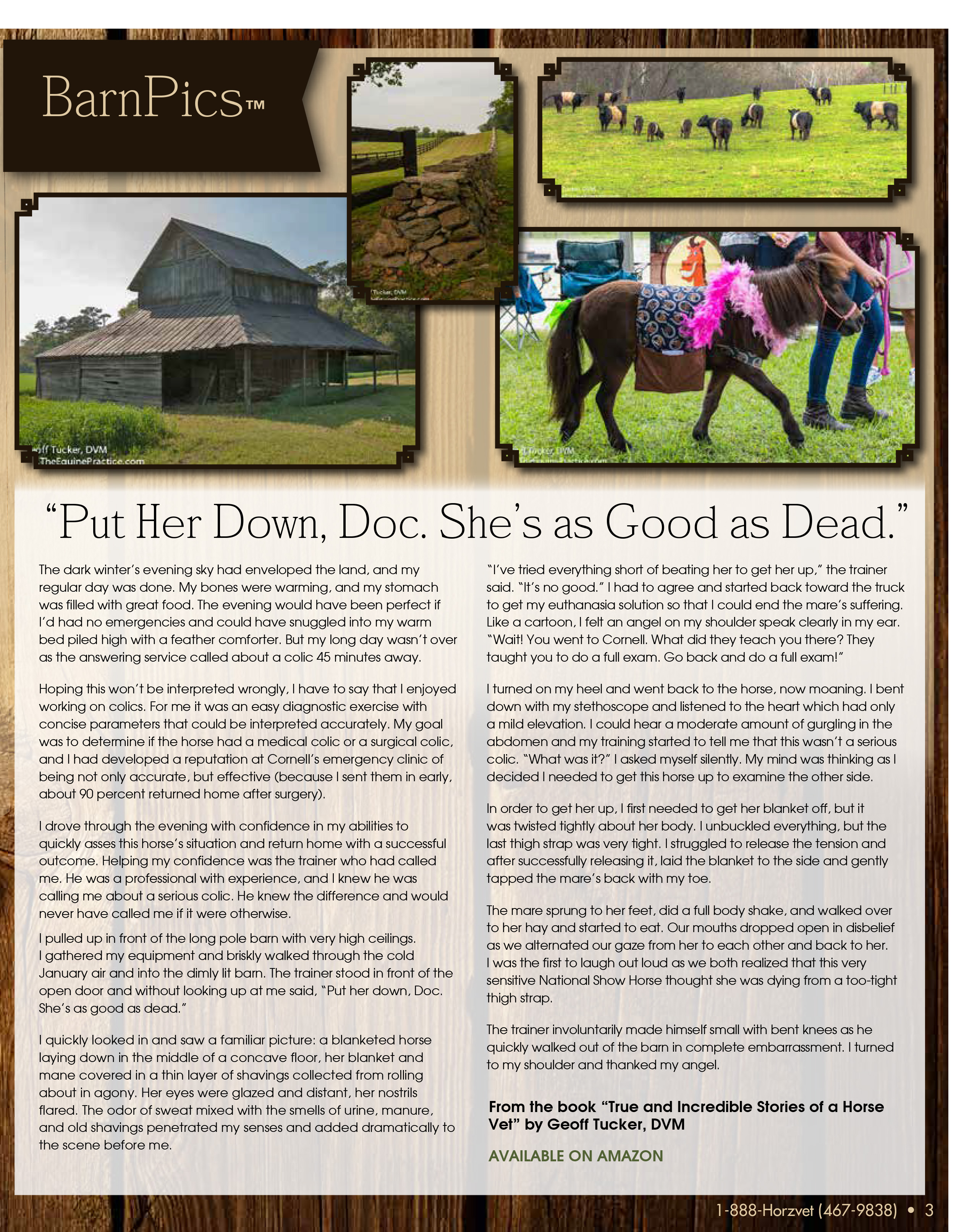 The Equine Practice Rounds™ December 2015 page 3 of 4