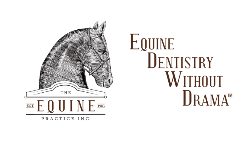Equine Dentistry Without Drama, The Equine Practice Inc