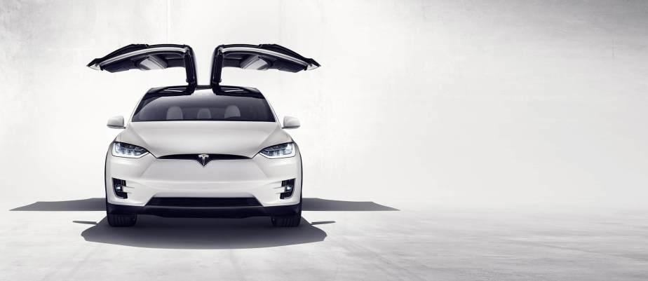 The Equine Practice, Inc, Tesla
