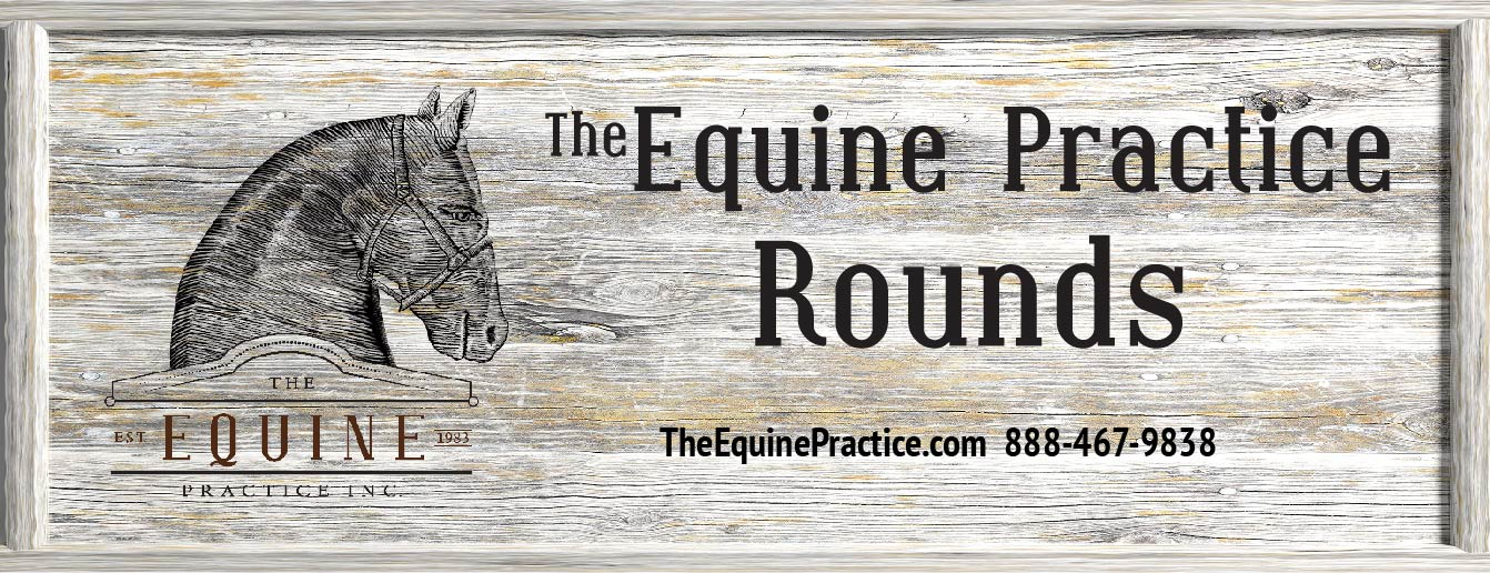 The Equine Practice Inc, The Equine Practice Rounds
