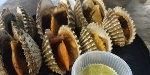 หอยแครงจักรพรรดิ์ลวก