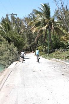 T_E_Diaries_Mauritius13