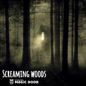 The Magic Door Escape Room - Screaming Woods