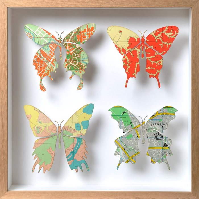 Image Surgery Butterfly Maps 1