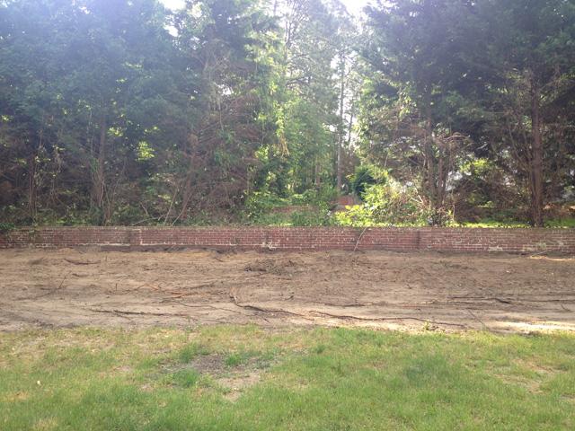sarah yard no fence