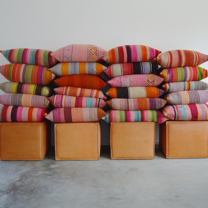 Frazada pillows by Garza Marfa