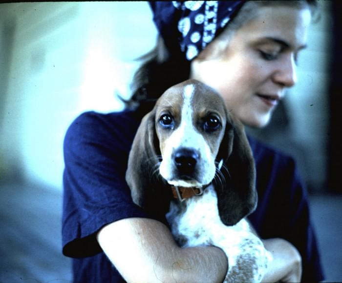 rosie puppy