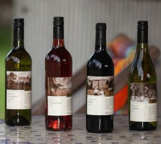 catalogue-wine