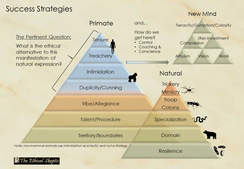 The Heirarchy of Natural Competitiveness