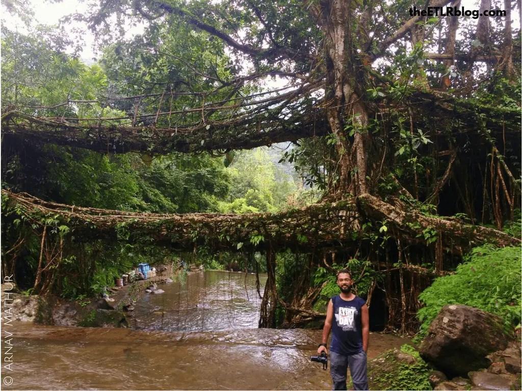 5 reasons to visit Shillong - Double Root Bridge