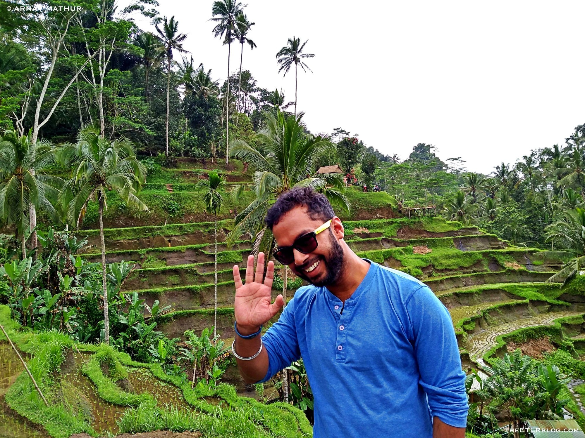 5 Reasons to have the Tegallalang Rice Terraces on your BALI Itinerary !