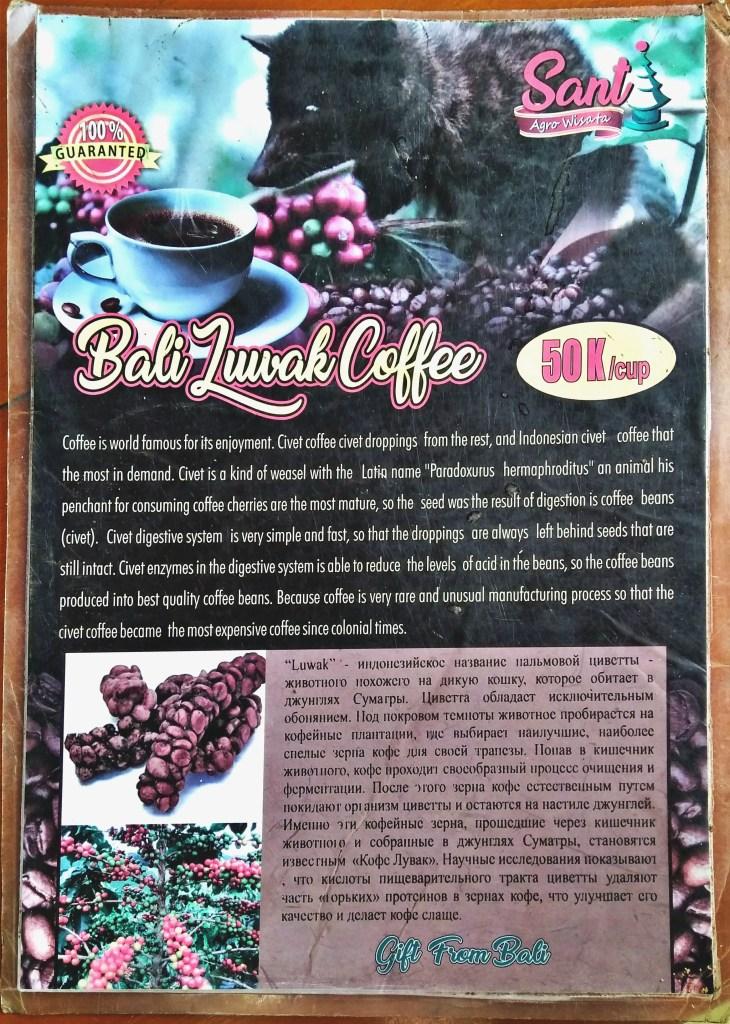 Best Things To Do in Bali - Coffee Tasting