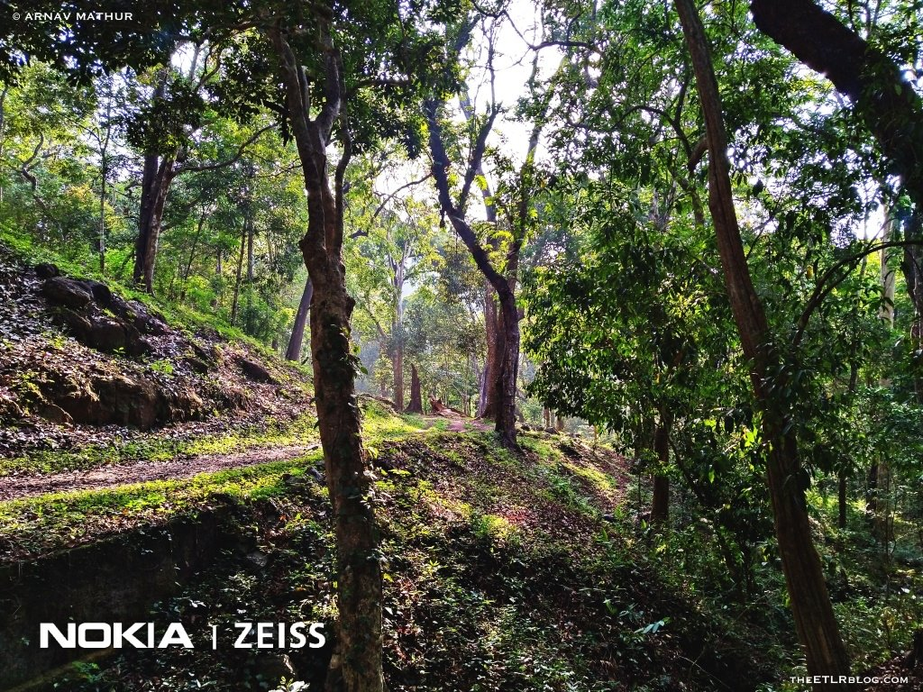 Nature Trails PTR Thekkady