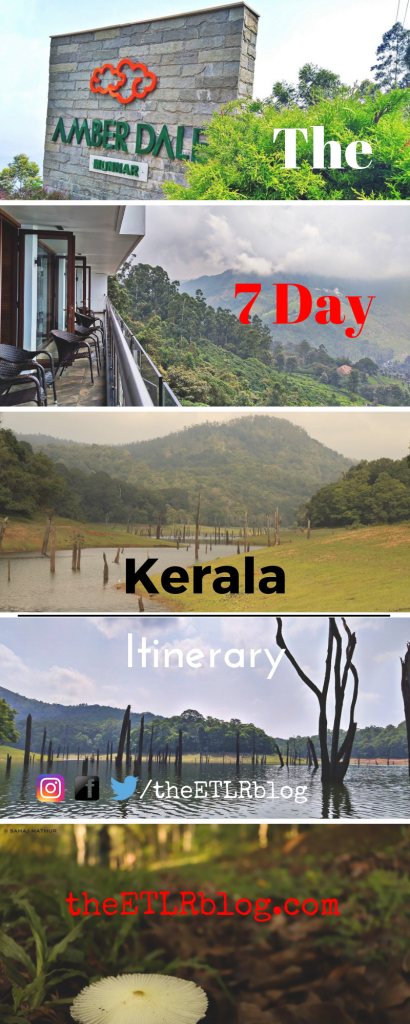 7 Day Kerala Road Trip Itinerary | Kerala Travel Guide