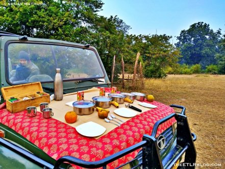 Packed Breakfast during Safari at Pench National Park