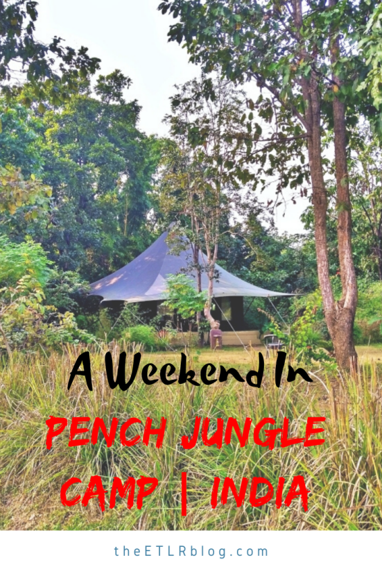 Pench Jungle Camp - Property Review | Weekend in Pench National Park | Wildlife Resorts India | Madhya Pradesh Resorts