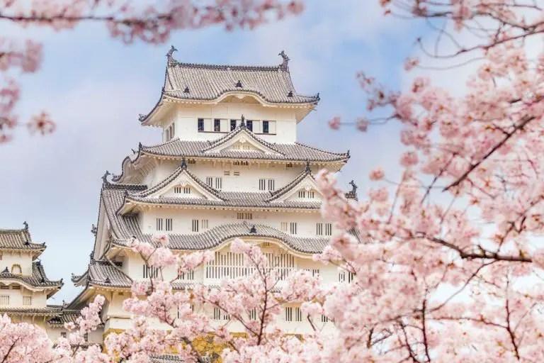 Cherry Blossom Festival Himeji Castle