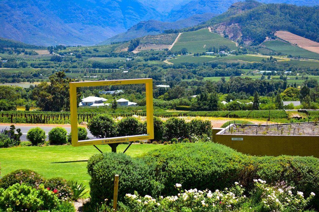 Haute Cabriere estate_South Africa Travel Itinerary