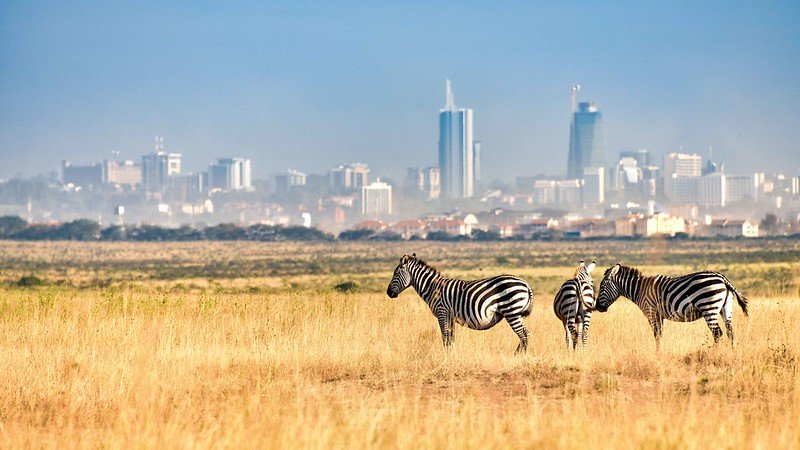 The 7 Day Nairobi Travel Itinerary and Guide