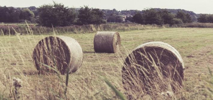 hay, scenery, elliniki eparxia