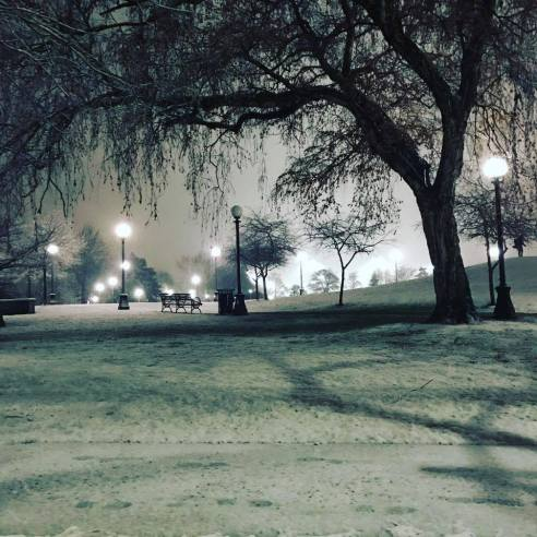 Cal Anderson Park on Capitol Hill as the snow was falling Sunday night (Photo by Shannon Martinovic)