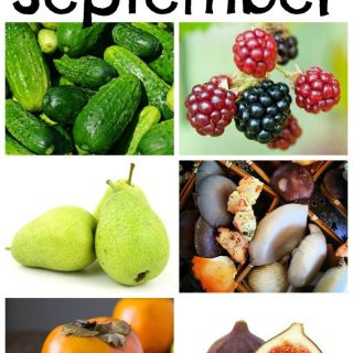 Your guide to September's seasonal food & recipes at www.theeverykitchen.com