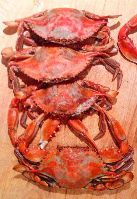 North Carolina blue crabs | www.theeverykitchen.com