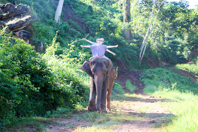 riding elephants in Thailand | www.theeverykitchen.com